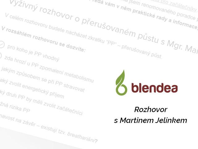 Rozhovor s Martinem Jelínkem na serveru Blendea.cz