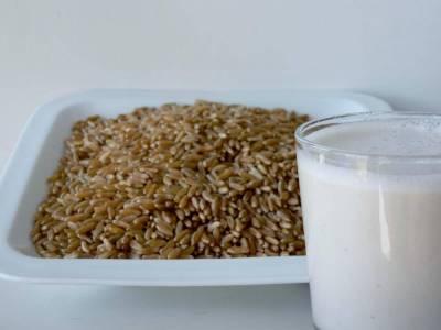 Kamutové mléko