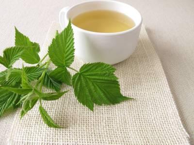 Čaj z listů maliníku