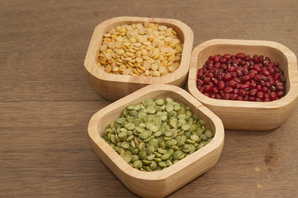 Antinutriční látky