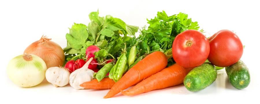 Alternativní výživové směry